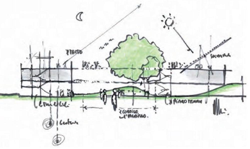 Le nuove scuole una occasione persa di partecipazione for Disegno del piano di architettura